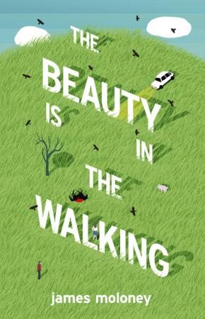 Beauty is in the Walking