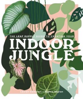 Leaf Supply Guide to Creating Your Indoor Jungle